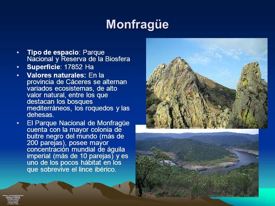 Monfragüe Tipo de espacio: Parque Nacional y Reserva de la Biosfera Superficie: 17852 Ha Valores naturales: En la provincia de Cáceres se alternan var