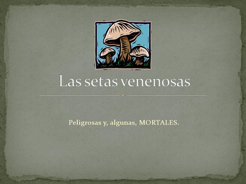 VENENOSAS COMESTIBLES