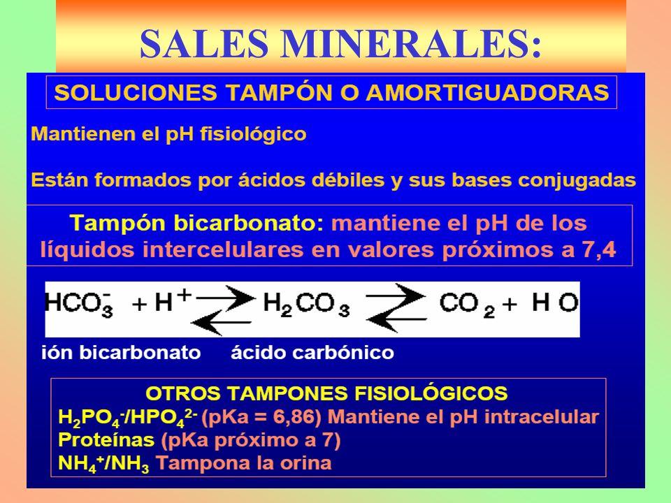 SALES MINERALES: