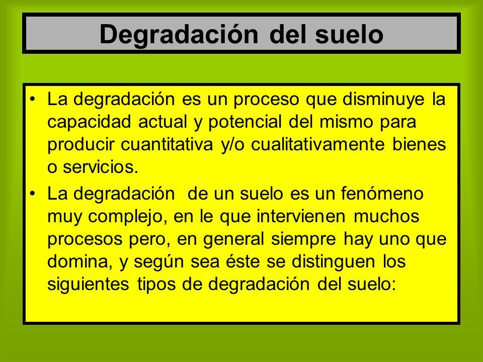 Degradación del suelo La degradación es un proceso que disminuye la capacidad actual y potencial del mismo para producir cuantitativa y/o cualitativam