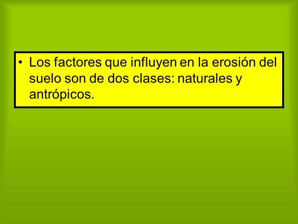 Los factores que influyen en la erosión del suelo son de dos clases: naturales y antrópicos.