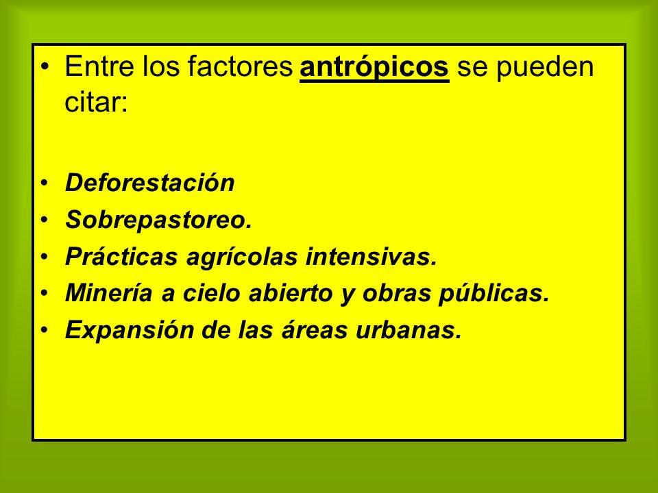 Entre los factores antrópicos se pueden citar: Deforestación Sobrepastoreo. Prácticas agrícolas intensivas. Minería a cielo abierto y obras públicas.