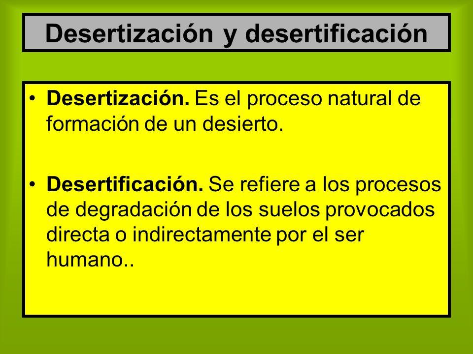 Desertización y desertificación Desertización. Es el proceso natural de formación de un desierto. Desertificación. Se refiere a los procesos de degrad