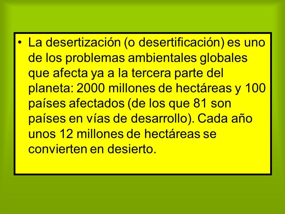 La desertización (o desertificación) es uno de los problemas ambientales globales que afecta ya a la tercera parte del planeta: 2000 millones de hectá