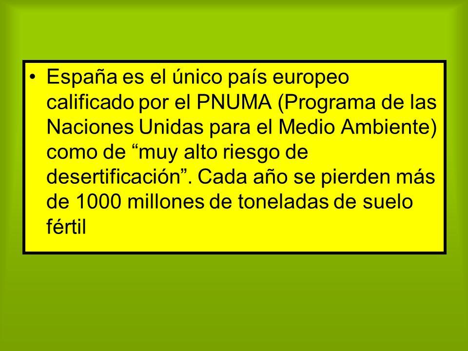 España es el único país europeo calificado por el PNUMA (Programa de las Naciones Unidas para el Medio Ambiente) como de muy alto riesgo de desertific