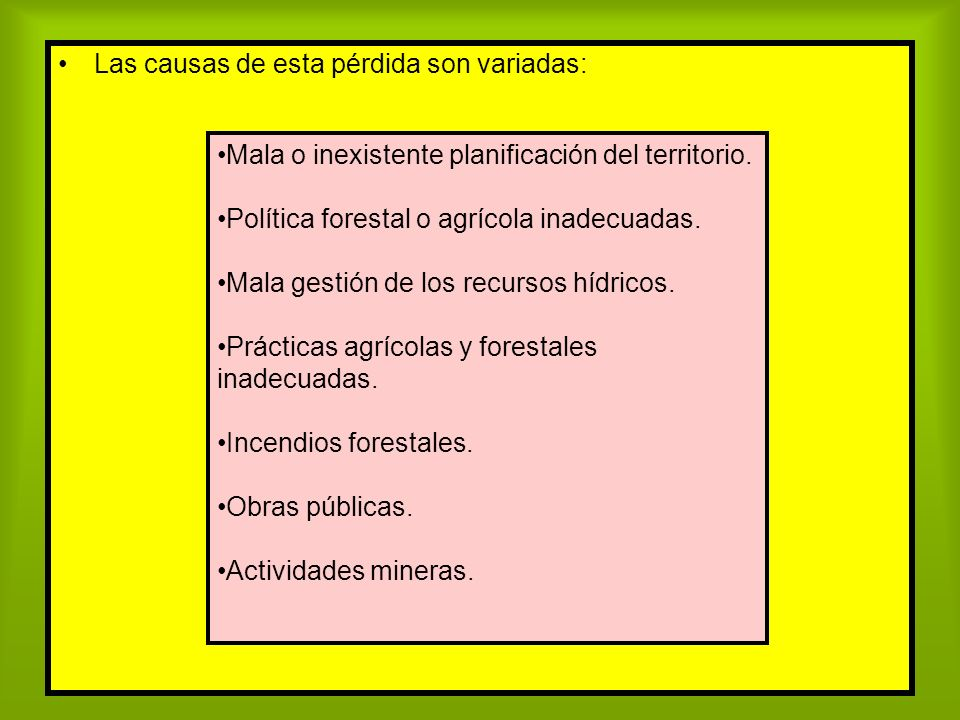 Las causas de esta pérdida son variadas: Mala o inexistente planificación del territorio. Política forestal o agrícola inadecuadas. Mala gestión de lo