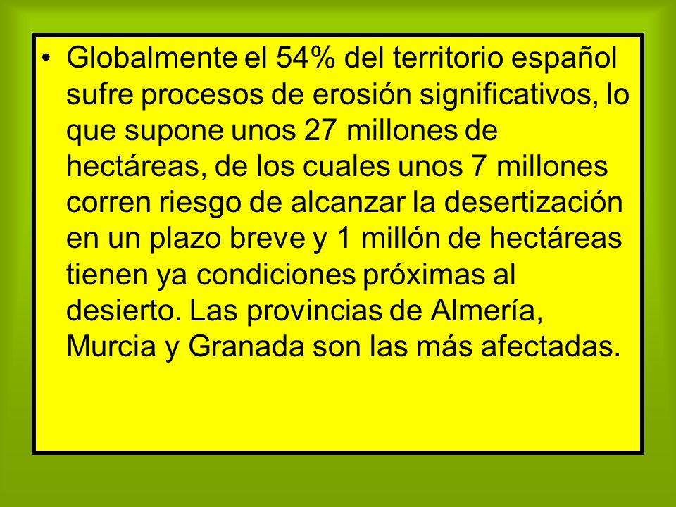 Globalmente el 54% del territorio español sufre procesos de erosión significativos, lo que supone unos 27 millones de hectáreas, de los cuales unos 7