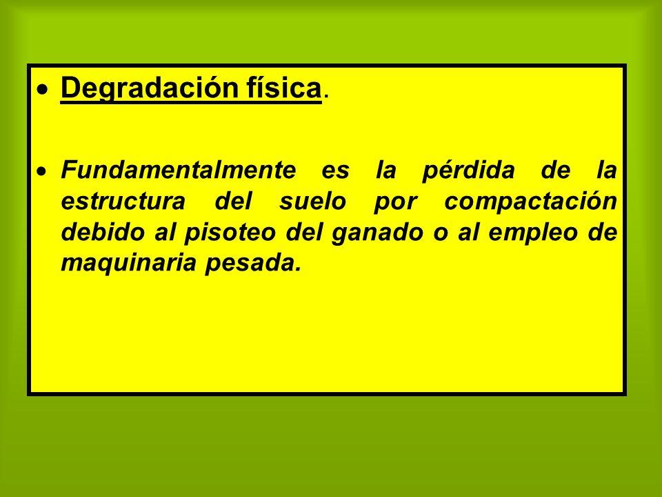 Degradación física. Fundamentalmente es la pérdida de la estructura del suelo por compactación debido al pisoteo del ganado o al empleo de maquinaria
