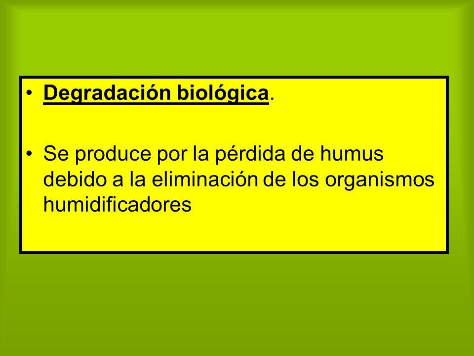 Degradación biológica. Se produce por la pérdida de humus debido a la eliminación de los organismos humidificadores
