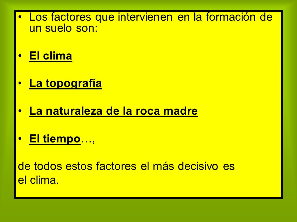 Los factores que intervienen en la formación de un suelo son: El clima La topografía La naturaleza de la roca madre El tiempo…, de todos estos factore