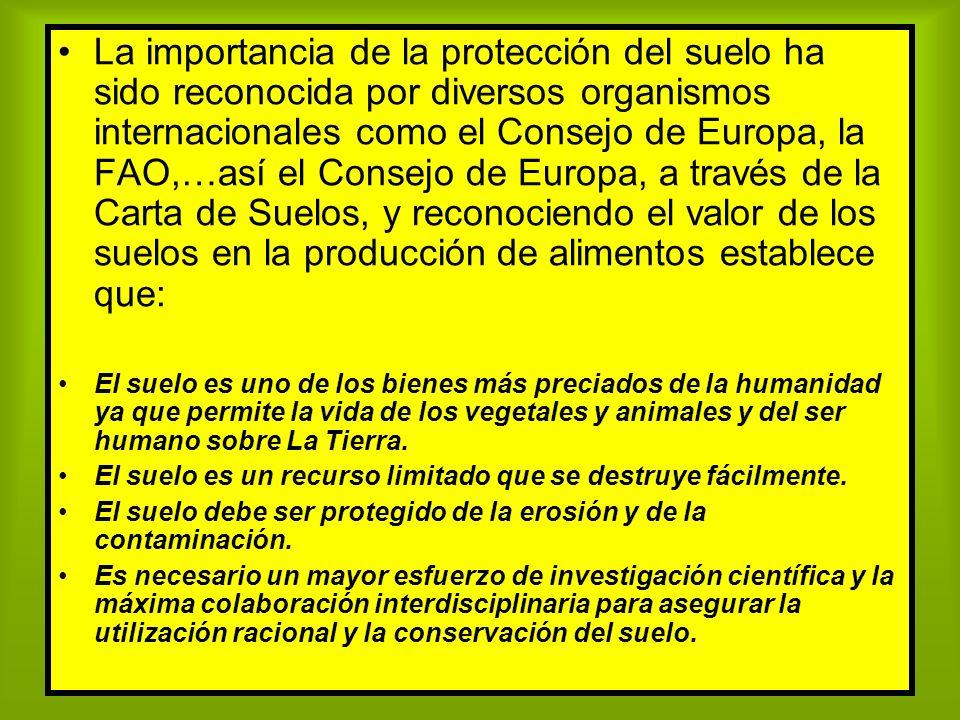 La importancia de la protección del suelo ha sido reconocida por diversos organismos internacionales como el Consejo de Europa, la FAO,…así el Consejo