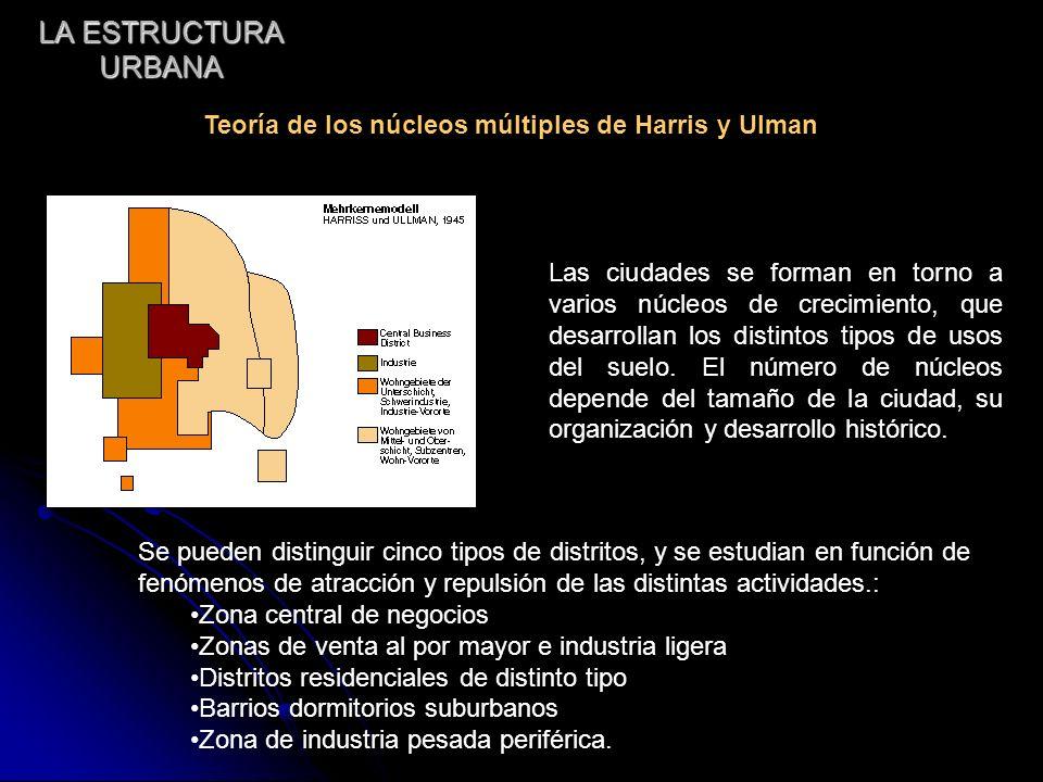 LA ESTRUCTURA URBANA Las ciudades se forman en torno a varios núcleos de crecimiento, que desarrollan los distintos tipos de usos del suelo. El número