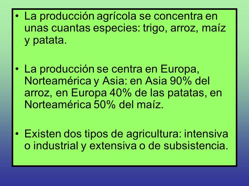 La producción agrícola se concentra en unas cuantas especies: trigo, arroz, maíz y patata. La producción se centra en Europa, Norteamérica y Asia: en