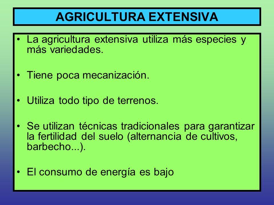 AGRICULTURA EXTENSIVA La agricultura extensiva utiliza más especies y más variedades. Tiene poca mecanización. Utiliza todo tipo de terrenos. Se utili