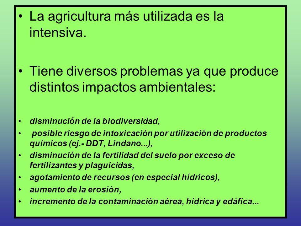 La agricultura más utilizada es la intensiva. Tiene diversos problemas ya que produce distintos impactos ambientales: disminución de la biodiversidad,
