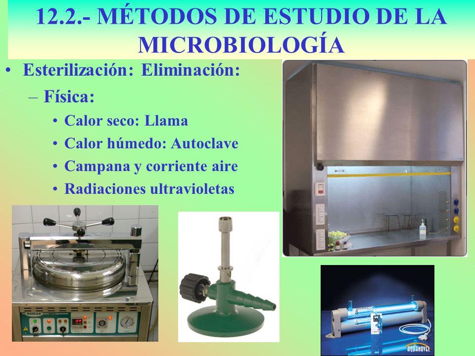 Esterilización: Eliminación: –Física: Calor seco: Llama Calor húmedo: Autoclave Campana y corriente aire Radiaciones ultravioletas 12.2.- MÉTODOS DE E
