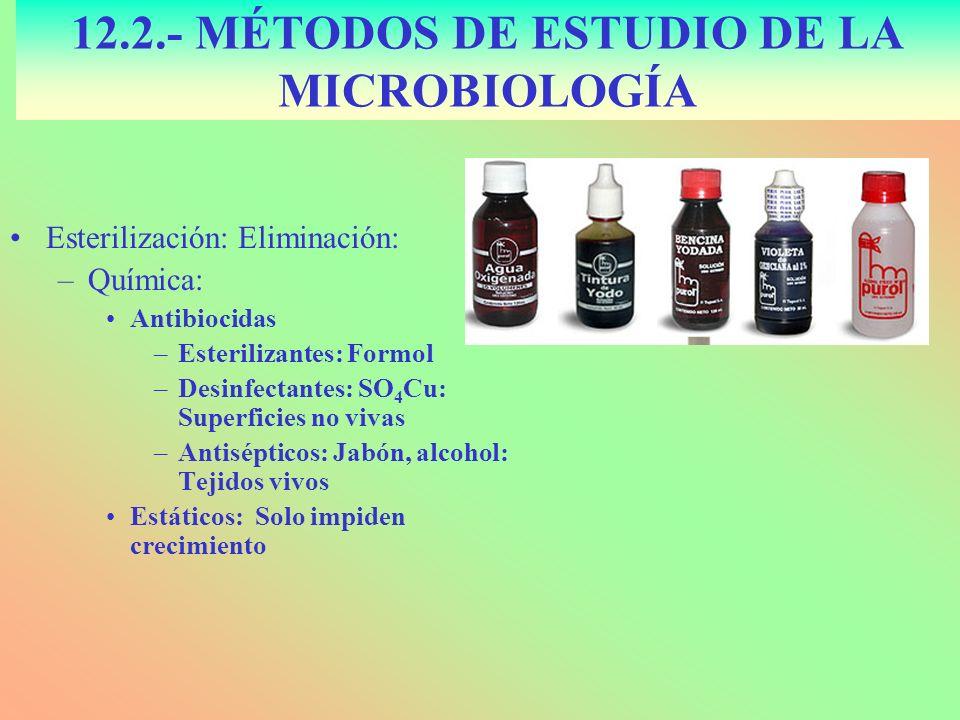 Esterilización: Eliminación: –Química: Antibiocidas –Esterilizantes: Formol –Desinfectantes: SO 4 Cu: Superficies no vivas –Antisépticos: Jabón, alcoh