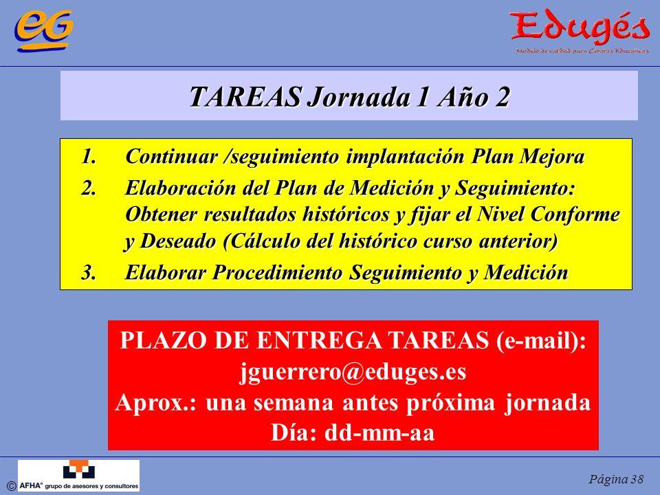 © Página 38 TAREAS Jornada 1 Año 2 1.Continuar /seguimiento implantación Plan Mejora 2.Elaboración del Plan de Medición y Seguimiento: Obtener resulta