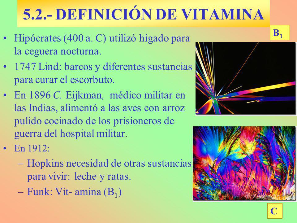VITAMINA B 1 Tiamina Base nitrogenada Fuentes: Carnes, legumbres.