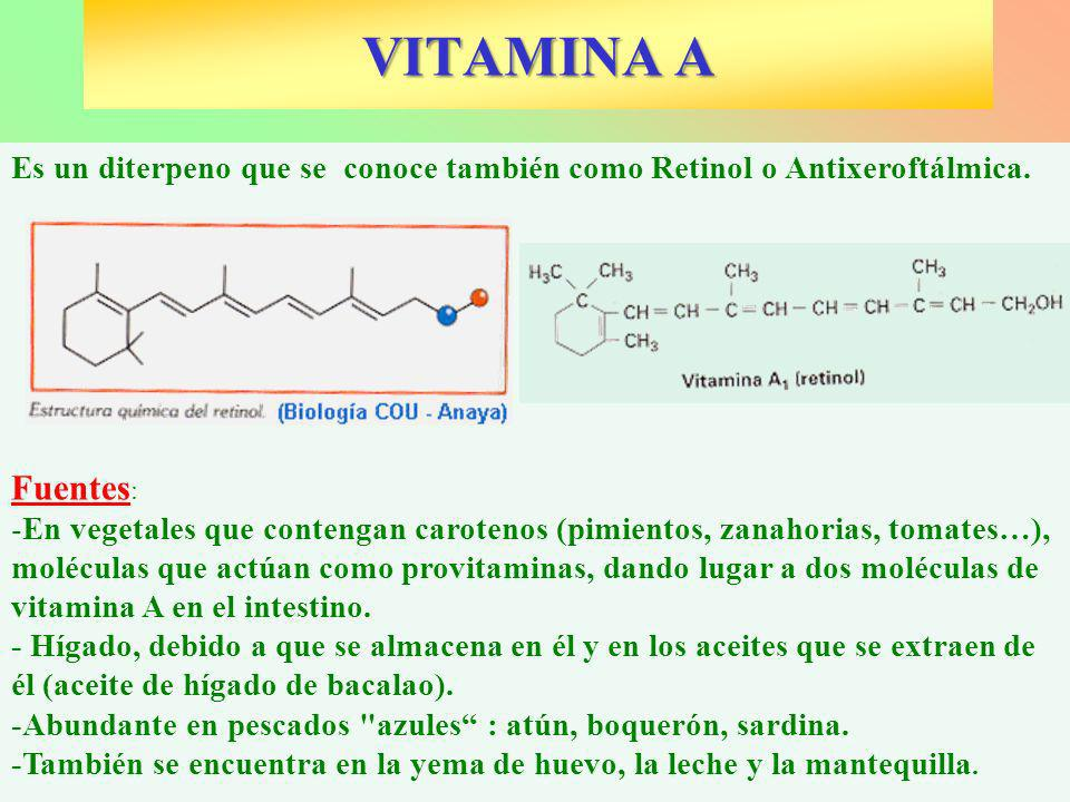 Es un diterpeno que se conoce también como Retinol o Antixeroftálmica. Fuentes : -En vegetales que contengan carotenos (pimientos, zanahorias, tomates