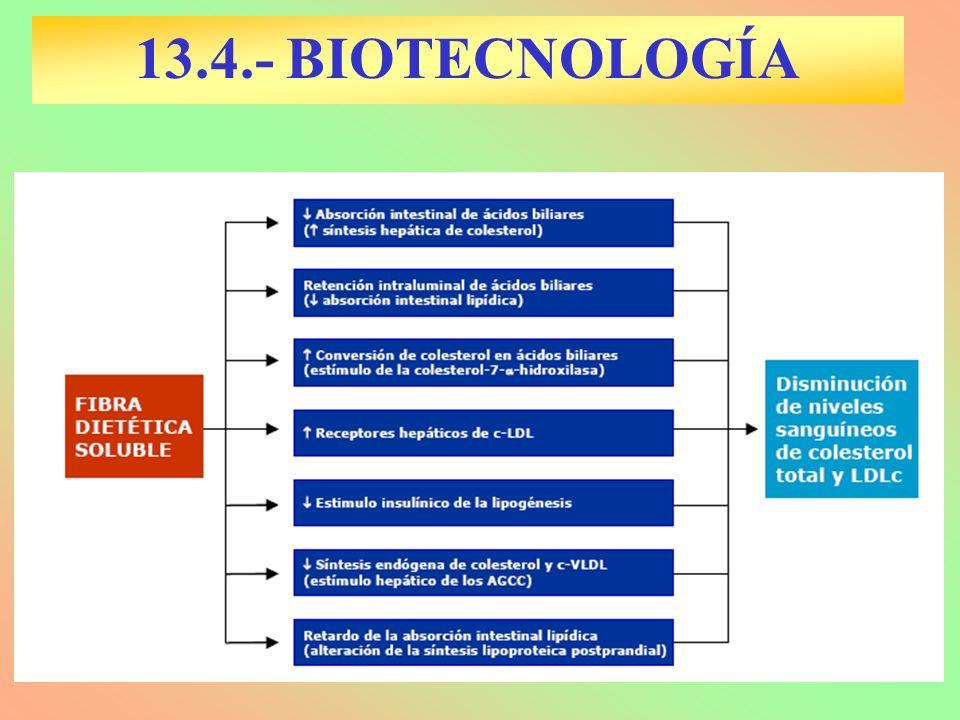 13.5.- BIOTECNOLOGÍA E INDUSTRIAS AGROPECUARIAS AGRICULTURA: –Producción plantas resistentes a plagas, frío, sequías, enf.