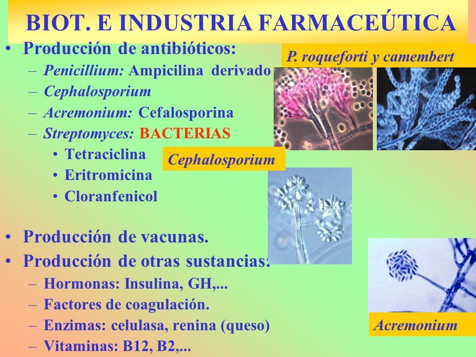 BIOT. E INDUSTRIA FARMACEÚTICA Producción de antibióticos: –Penicillium: Ampicilina derivado –Cephalosporium –Acremonium: Cefalosporina –Streptomyces: