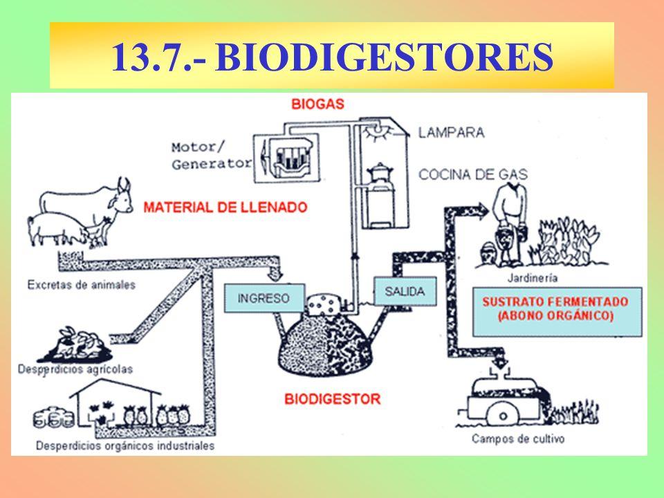 13.7.- BIODIGESTORES