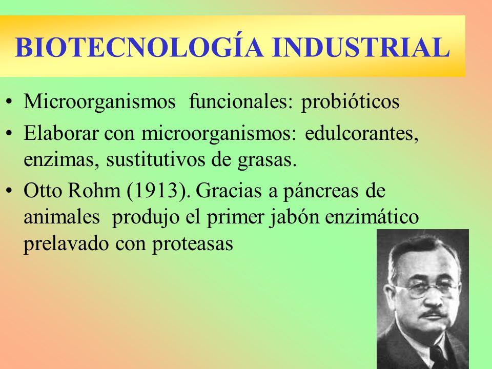 BIOTECNOLOGÍA INDUSTRIAL Microorganismos funcionales: probióticos Elaborar con microorganismos: edulcorantes, enzimas, sustitutivos de grasas. Otto Ro