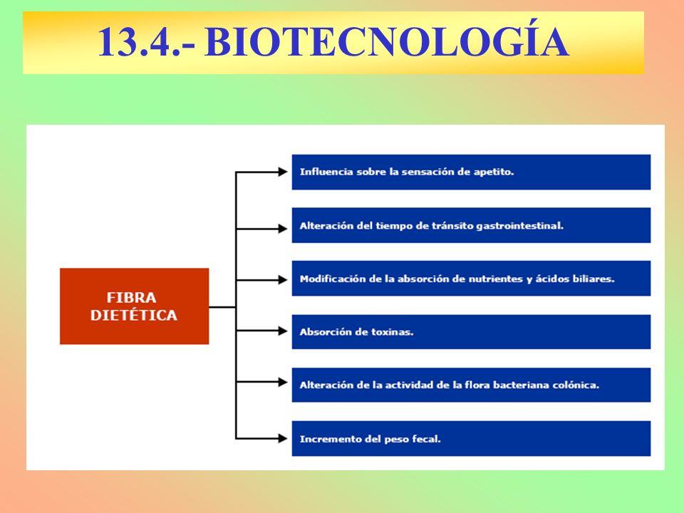 13.4.- BIOTECNOLOGÍA
