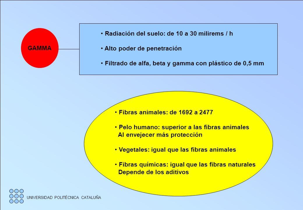 UNIVERSIDAD POLITÉCNICA CATALUÑA ALFA BETA GAMMA Fuente: Tejido de punto de seda con sales de torio A 100 mm del Geiger Muestras: A 10 mm del Geiger.