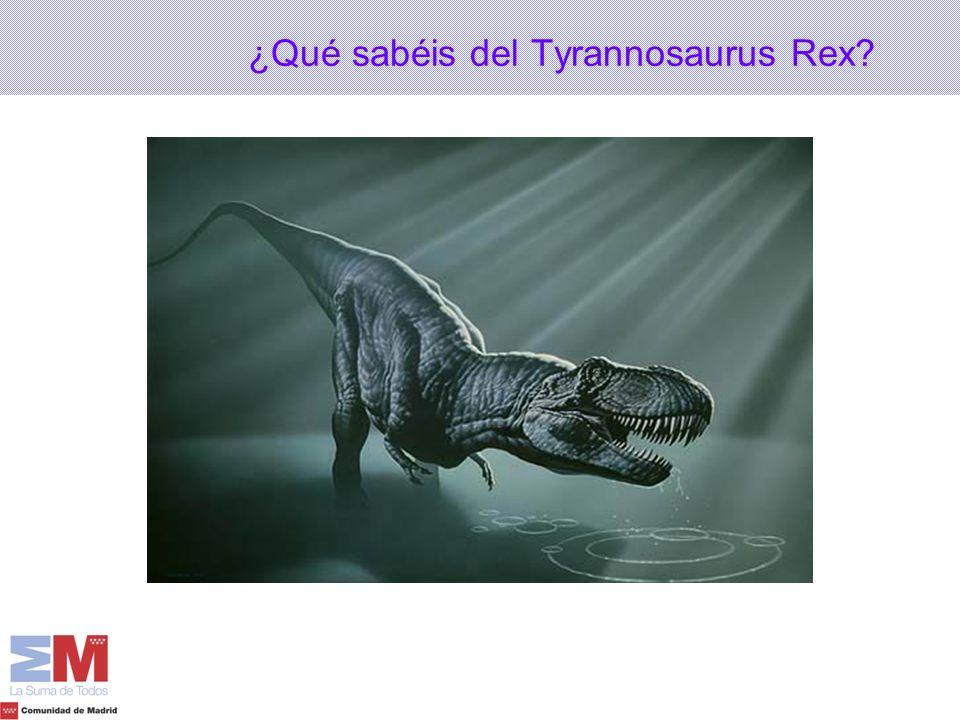¿Qué sabéis del Tyrannosaurus Rex?
