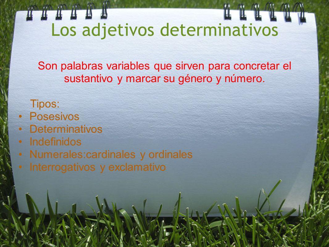 Los adjetivos determinativos Son palabras variables que sirven para concretar el sustantivo y marcar su género y número. Tipos: Posesivos Determinativ