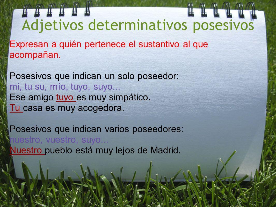 Adjetivos determinativos posesivos Expresan a quién pertenece el sustantivo al que acompañan. Posesivos que indican un solo poseedor: mi, tu su, mío,