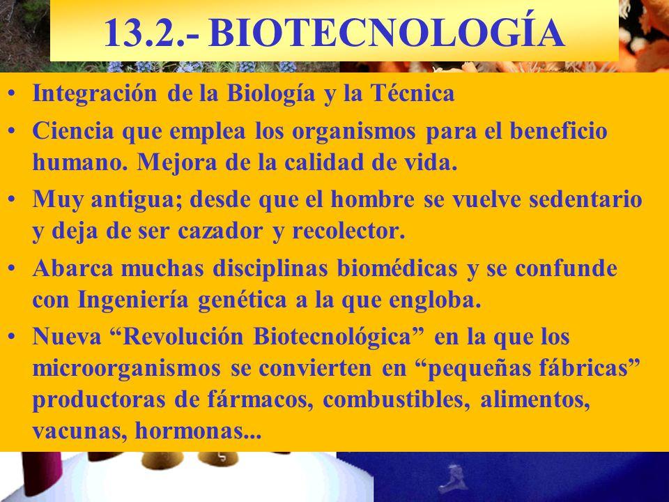 Integración de la Biología y la Técnica Ciencia que emplea los organismos para el beneficio humano. Mejora de la calidad de vida. Muy antigua; desde q