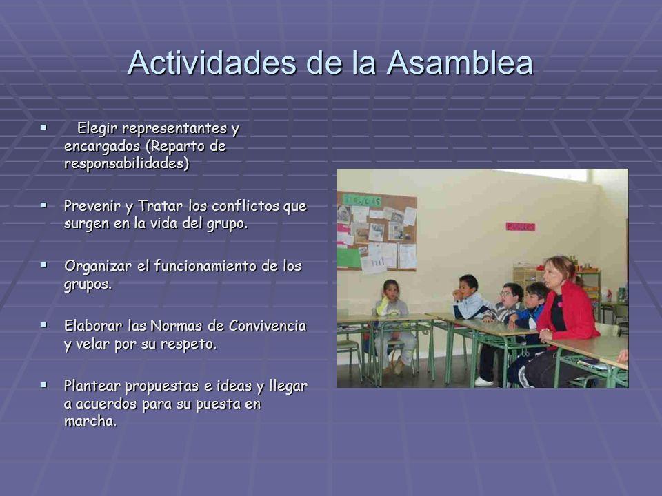 Actividades de la Asamblea Elegir representantes y encargados (Reparto de responsabilidades) Elegir representantes y encargados (Reparto de responsabi