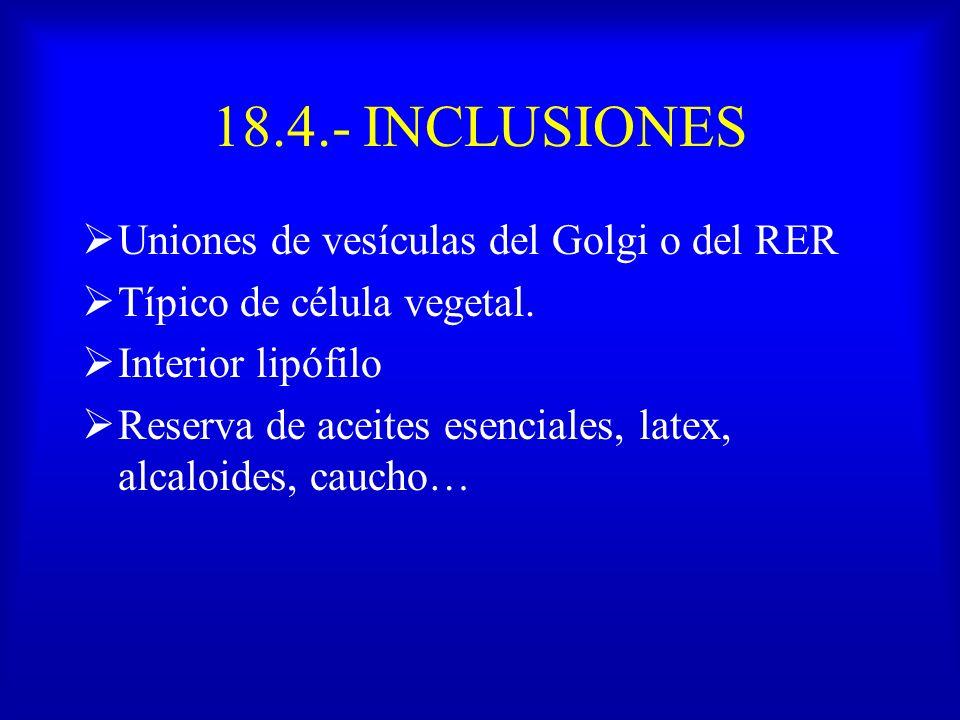 18.4.- INCLUSIONES Uniones de vesículas del Golgi o del RER Típico de célula vegetal. Interior lipófilo Reserva de aceites esenciales, latex, alcaloid