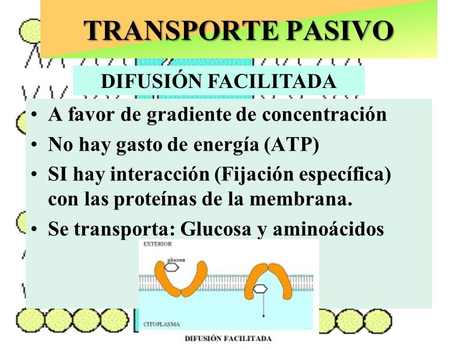 Puede ocurrir con o sin LIGANDO TRANSPORTE PASIVO A favor de gradiente de concentración No hay gasto de energía (ATP) SI hay interacción (Fijación esp