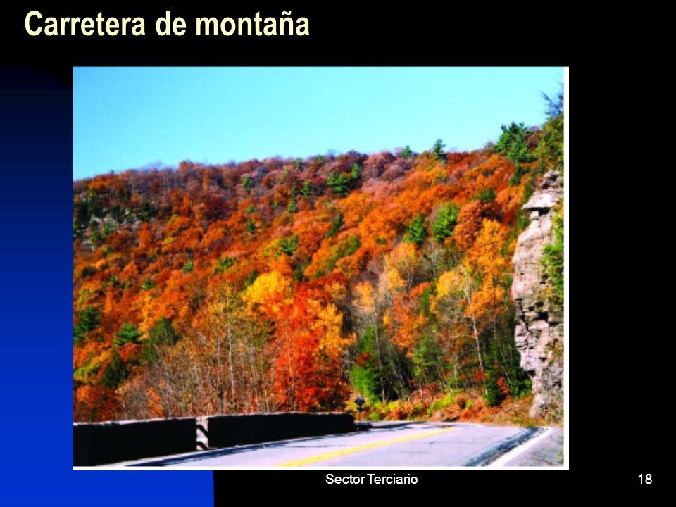Sector Terciario18 Carretera de montaña