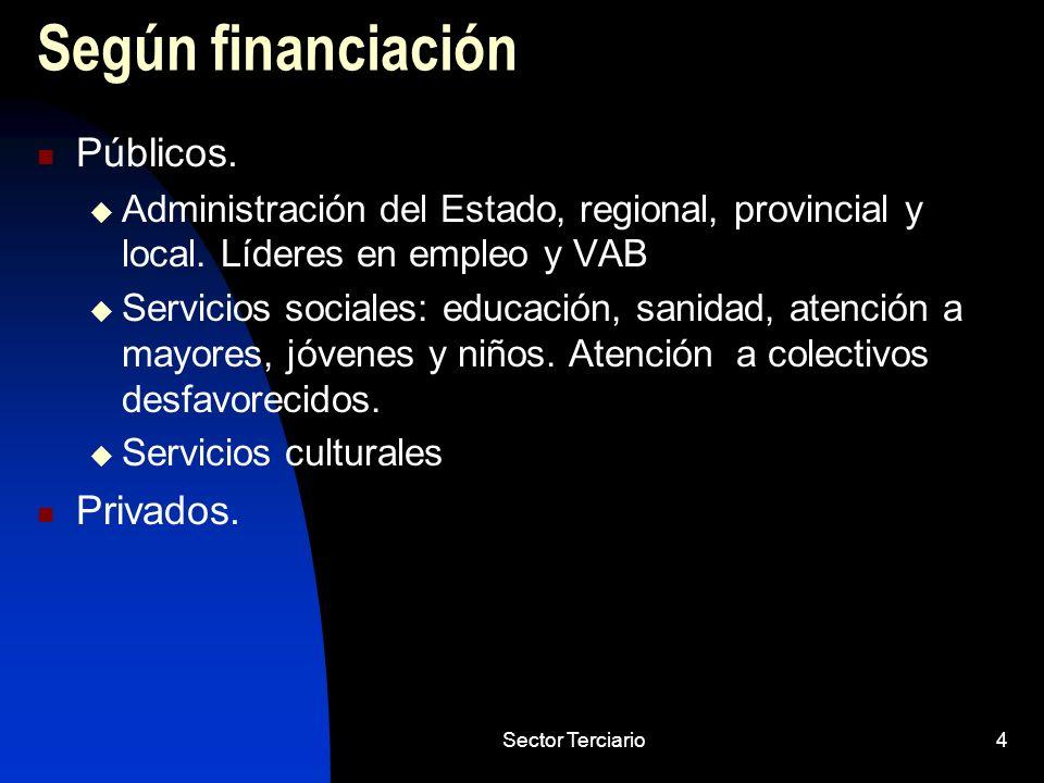 Sector Terciario4 Según financiación Públicos. Administración del Estado, regional, provincial y local. Líderes en empleo y VAB Servicios sociales: ed