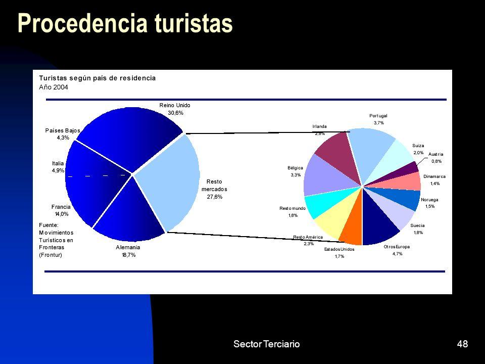Sector Terciario48 Procedencia turistas