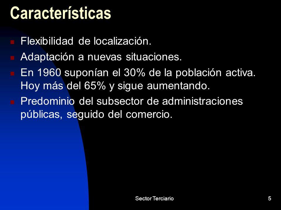 Sector Terciario5 Características Flexibilidad de localización. Adaptación a nuevas situaciones. En 1960 suponían el 30% de la población activa. Hoy m