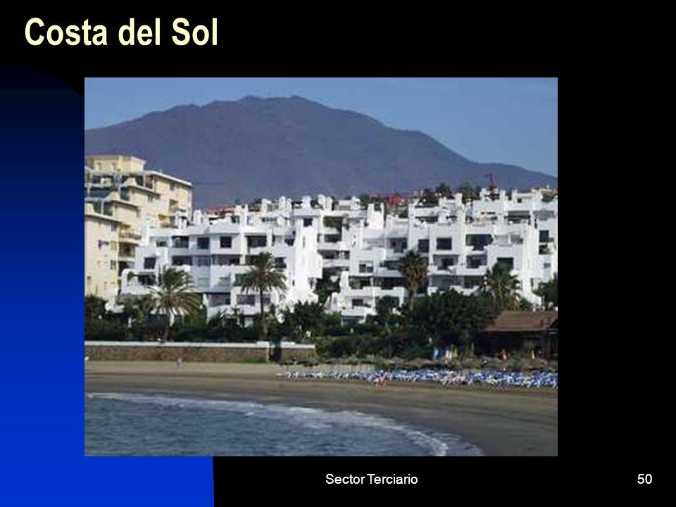 Sector Terciario50 Costa del Sol