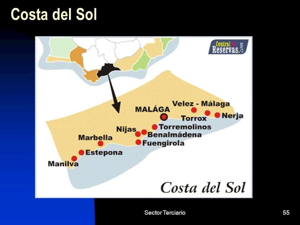 Sector Terciario55 Costa del Sol