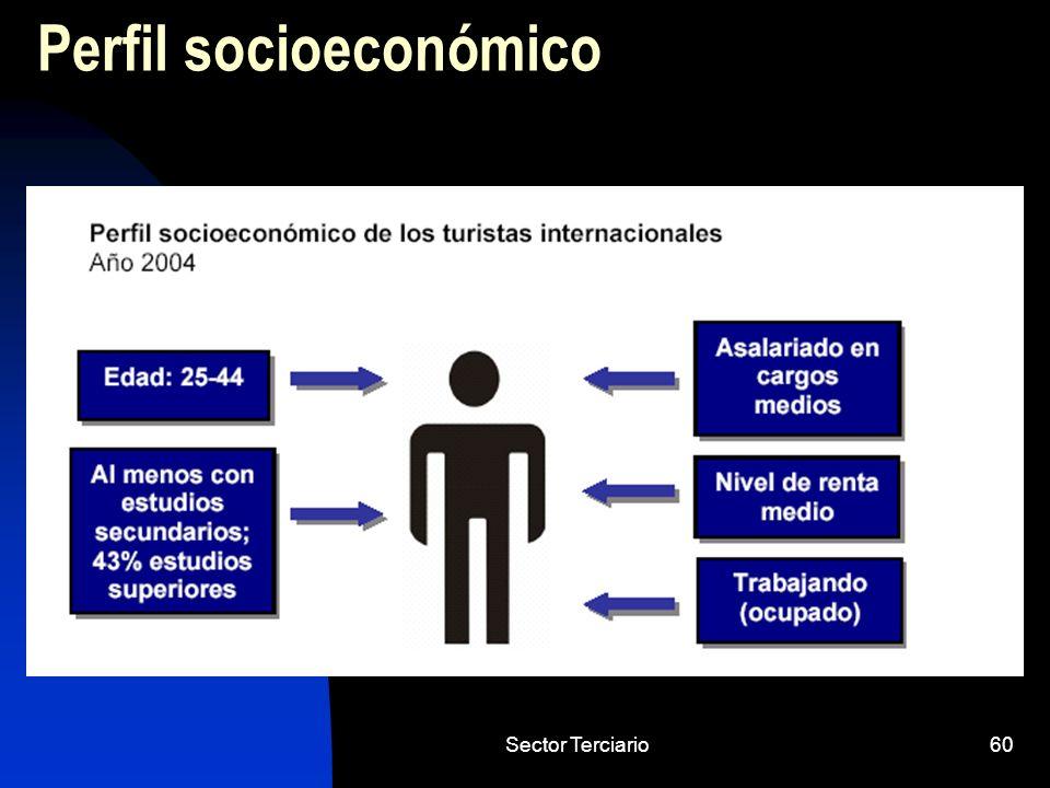 Sector Terciario60 Perfil socioeconómico