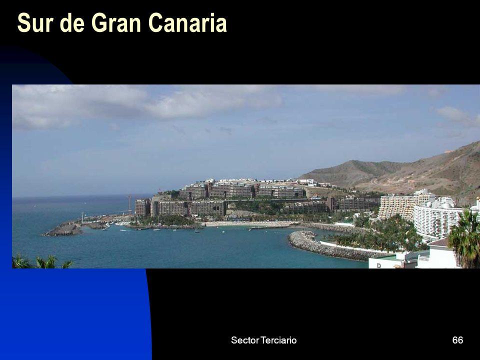 Sector Terciario66 Sur de Gran Canaria