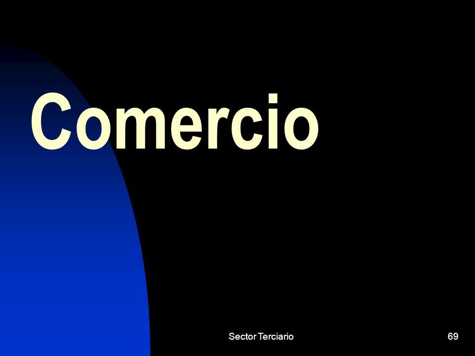 Sector Terciario69 Comercio