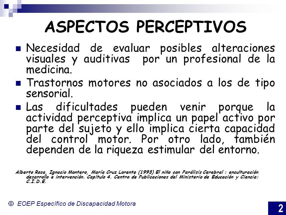 2 EOEP Específico de Discapacidad Motora ASPECTOS PERCEPTIVOS Necesidad de evaluar posibles alteraciones visuales y auditivas por un profesional de la