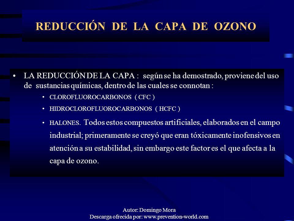Autor: Domingo Mora Descarga ofrecida por: www.prevention-world.com REDUCCIÓN DE LA CAPA DE OZONO LA REDUCCIÓN DE LA CAPALA REDUCCIÓN DE LA CAPA : seg