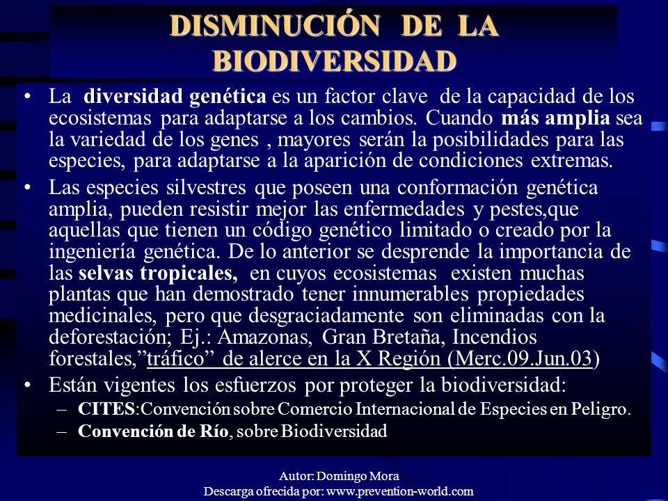Autor: Domingo Mora Descarga ofrecida por: www.prevention-world.com DISMINUCIÓN DE LA BIODIVERSIDAD La diversidad genética es un factor clave de la ca
