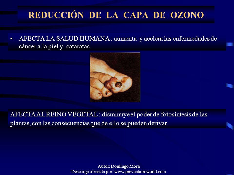 Autor: Domingo Mora Descarga ofrecida por: www.prevention-world.com REDUCCIÓN DE LA CAPA DE OZONO AFECTA LA SALUD HUMANAAFECTA LA SALUD HUMANA : aumen